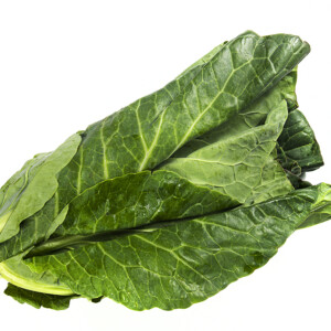 Cabbage (Spring Green)