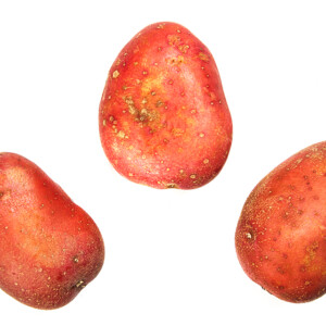 Potatoes (Rooster Baker)