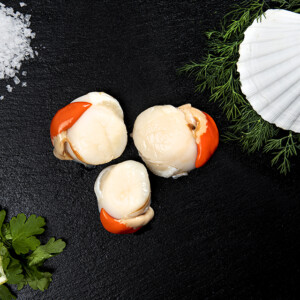 King Scallop Meat (4)